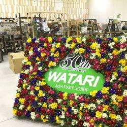 静岡県『創立50周年記念 平成30年 春の見本市』の報告!!
