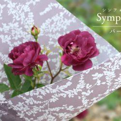 『シンフォニー』パールグレーで花束ラッピング‼