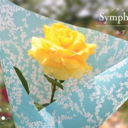 『シンフォニー ルアングリーン』で花束ラッピング