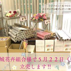 明日5月22日(金)宮城花卉組合様で新商品の立売があります‼